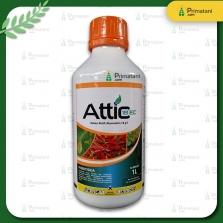 ATTIC 18 EC 1L