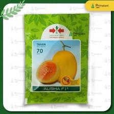 Melon Golden Alisha F1 400 Butir