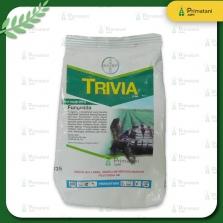 Trivia 73 WP 50 gr